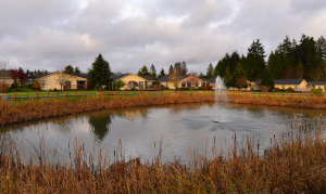Photo of the pond at Stillwaters Estates Retirement Community